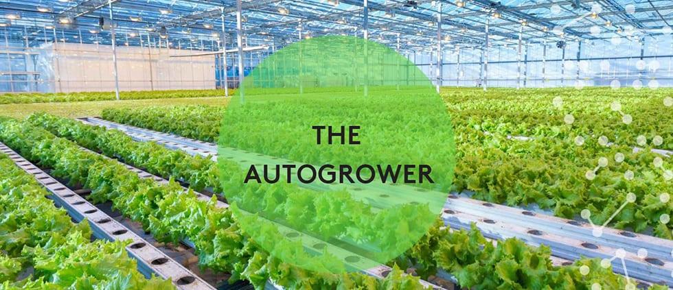 Nieuw Zeelands tuinbouwbedrijf Autogrow zet juist nu stap naar Europa 1